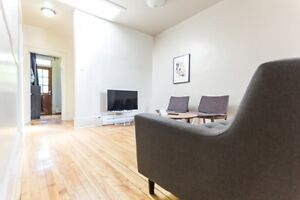 Downtown- FULLY FURNISHED - 4-9 MONTH LEASE - SEPT-MAY #751