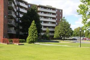 1 bedroom apartment for rent in Cornwall! Cornwall Ontario image 2