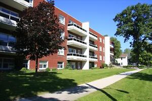 Lovely 2 bedroom apartment for rent Sarnia Sarnia Area image 1