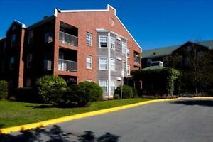 2 Bedroom Apartment for Rent in Halifax's Clayton Park!