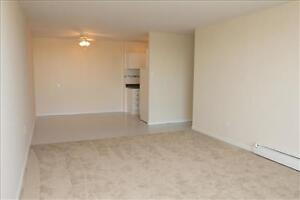 Huron and Adelaide: 945 and 955 Huron Street, 1BR London Ontario image 12