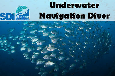 Sdi Online Navigation Elearning Code