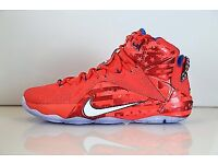 Nike LeBron uk size 8 usa size 9 basket ball shoes brand new offers