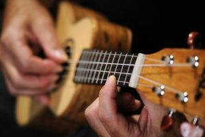 Ukulele Lessons Available in the River Heights Tuxedo Area
