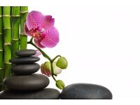 Relaxing / Magic/Massage Therapy Time .... in Corstorphine (LOLLA)