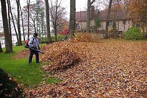 Leaf Removal & EavesTrough Cleaning & Repair Kitchener / Waterloo Kitchener Area image 2