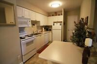 ONLY ONE! Spacious 2 + Den Suite! UTIL INCL!