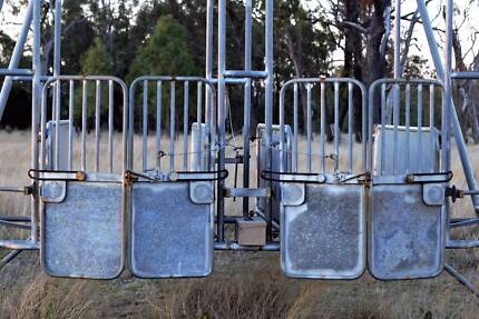 Starting Gates - Racing Practice Stalls - Perfect Condition