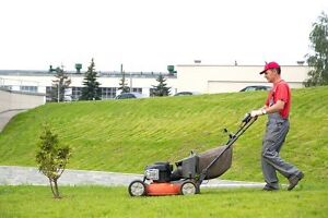 Domestic- Industrial Lawn Mowing Service Blacktown Blacktown Area Preview