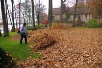 Father-Son Leaf Blowing Service
