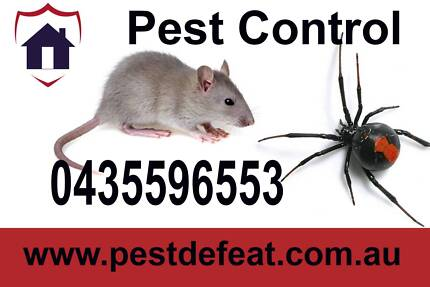 Cheap Pest Control from $75