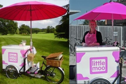Customisable Food trikes - sell ice creams, coffee, popcorn, hotdogs