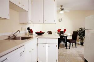 Great Incentives on 2 bedroom apartments Edmonton Edmonton Area image 10