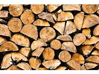 Logs/Trees wanted for wood stove