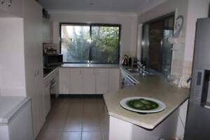 U Shaped Kitchen Palmwoods Maroochydore Area Preview