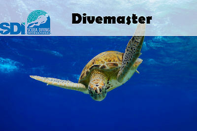 Sdi Online Dive Master Elearning Code