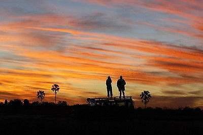 Die Serengeti und der Ngorogorro Krater (Tansania)