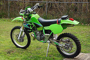 Looking For Steet legal Dirt Bike