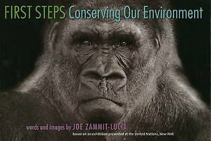 First Steps, Joe Zammit-Lucia