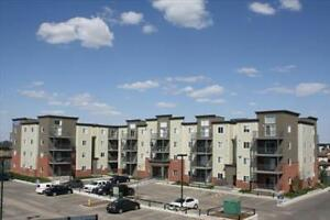 Modern suites and great incentives at Elizabeth Gardens! Edmonton Edmonton Area image 8