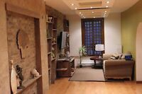 Beautiful furnished studio ZEN style in Montreal for September