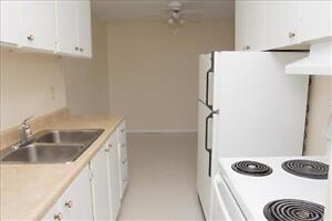 Huron and Adelaide: 945 and 955 Huron Street, 1BR London Ontario image 7