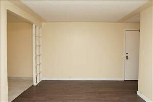Ridout and Horton: 59 Ridout Street, Jr 1BR London Ontario image 3
