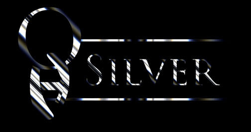 Ohsilver Auctions