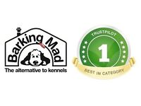 Experienced Dog Lovers to become Hosts for the UKs most trusted dog sitting company, Barking Mad