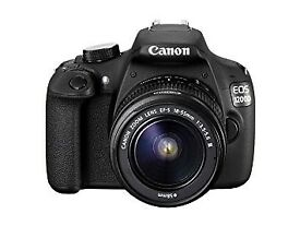 canon 1200d body only