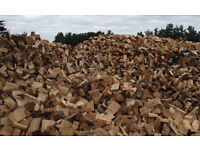 fresh cut firewood logs softwood timber buy now and save a packet all cut and split ready to season