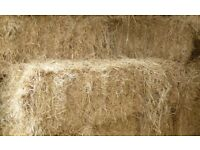 SMALL BALE HAY - 9 BALES LEFT BARN STORED