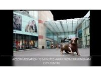 ACCOMMODATION 10 MINS AWAY FROM BIRMINGHAM CITY CENTRE!