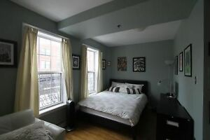 Gorgeous BRIGHT Studio in Downtown Halifax - MAY 1st