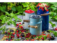Do you have a garden with fruit and berries you can share with others?