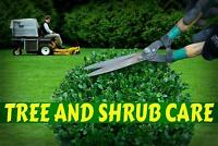 TREE HEDGE SHRUB Trimming Pruning Removal Residential Commercial