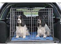 dog cage suitablr for hatch back car
