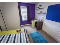 Student Flat, Liverpool City Centre