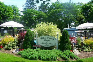Vacation Rentals in the heart of Beautiful Port Dover