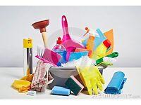 Cleaner Anna