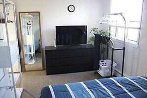 Furnished Room for Rent - Female (Stratford)