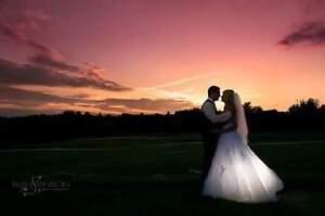 Beautiful Pronovias Wedding Dress London Ontario image 4