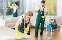 Offering Cleaning Contracts for offices