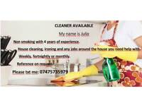 Private Cleaner Available