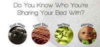 ♥☼ Get Rid of those Nasty Things in your Mattresses ♥☼