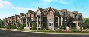 3 Bed Townhouse in Brampton