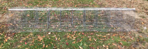 Cages à poule pondeuse