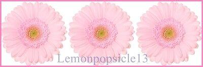 Lemonpopsicle13