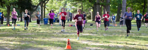 High Park Bootcamps Toronto Fitness Boot Camp Bloor West - SAVE