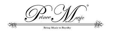 PrinceMusic2013